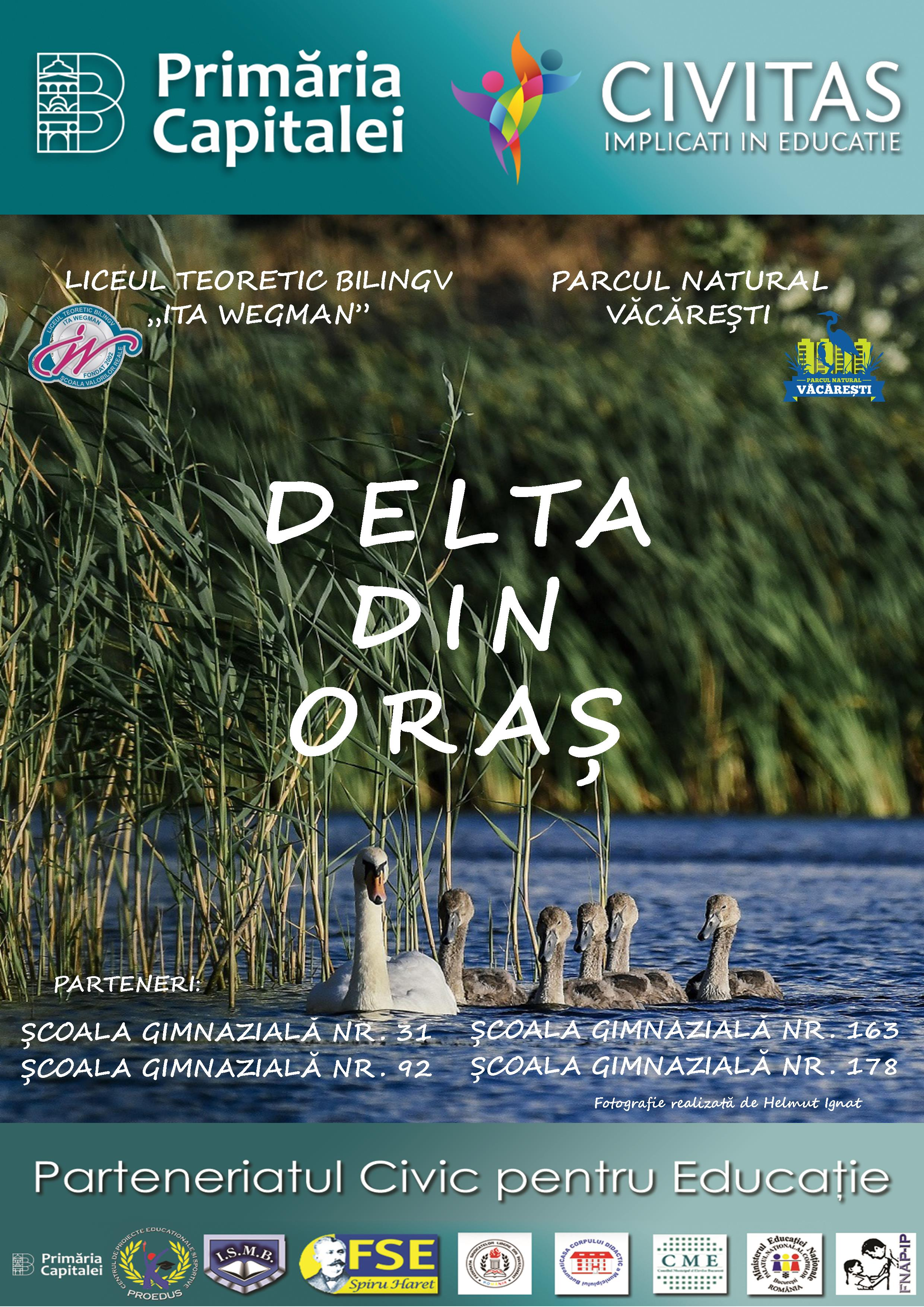 Anunț de lansare proiect: Delta din oraș