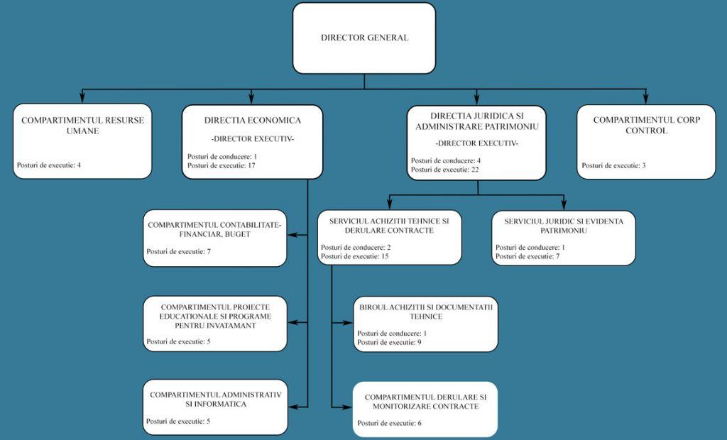Organigrama DGAPI 2020